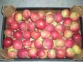 Jabłka Fuji