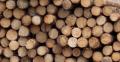 Drewno okrągłe