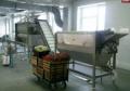 Linie technologiczne do przetwórstwa warzyw twardych