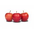 Jabłka Gala Royal