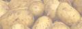 Ziemniaki sadzeniaki  Denar