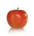 Jonagored to najlepsza pododmianę Jonagold. Duże, aromatyczne owoce, o słodkim smaku, są dostępne od października do maja. Ładny wygląd (duże czerwone rumieńce) i wysoka odporność na trudy transportu są bardzo cenione wśród Klientów