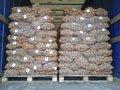 Ziemniaki jadalne, ziemniaki żółte, ziemniaki czerwone od czerwca do kwietnia