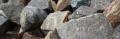 Kostka z kamienia łupanego