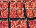 Owoce z polskich sadów - jabłka, gruszki, porzeczki, śliwki, wiśnie, czereśnie, aronia.
