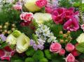 Fantazyjne, klasyczne, eleganckie kompozycje kwiatowe z roślin stabilizowanych.
