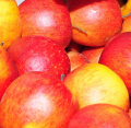 Świeże jabłka w odmianie Gala gotowe do dostawy prosto z sadu.