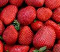 Soczyste i słodkie truskawki od krajowego producenta.