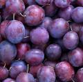 Jesienne owoce: śliwki.