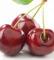 Świeże wiśnie od sadowników.