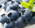 Suszone owoce borówki czernicy do sporządzania naparów.
