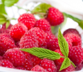 Suszony owoc maliny wykazuje działanie przeciwgorączkowe i napotne.