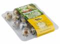 Jaja przepiórcze z chowu klatkowego pakowane po 18 sztuk.