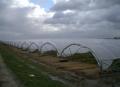 Ένα ευρύ φάσμα επαληθευμένων polytunnels: szpalerowych, τηλεσκοπικές και άλλες