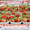 Owoce truskawek, świeże truskawki export