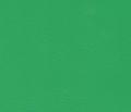 Skóra ekologiczna Tricomed o szerokim zastosowaniu w tapicerowaniu mebli, przemyśle kaletniczym i reklamowym a także w produkcji sprzętu wodnego i gimnastycznego dostępna w wielu atrakcyjnych kolorach
