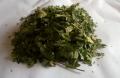 Porzeczka czarna liść  (Ribis nigri folium) suszona ,hurt