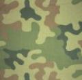 Tkaniny drukowane. Wybór wzorów i kolorów.