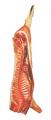 Wieprzowina. Półtusze wieprzowe, oraz inne rodzaje mięsa.