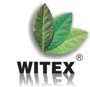 Witex, Sp. z o.o., Zielona Góra