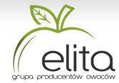 Elita, Sp. z o.o., Dmosin