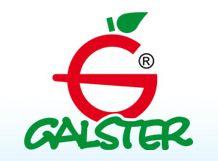 Galster, Sp. z o.o., Bydgoszcz