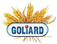 Goliard, Sp. z o.o., Rudniki