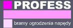 Profess, P.P.H., Ostrów Wielkopolski