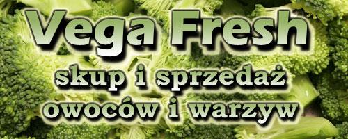 Vega Fresh, P.W., Łęczyca