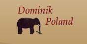 Dominik Poland Zakład Mebli Dominik Kazimierz Ławida, P.H.U., Choroszcz