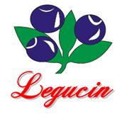 Legucin, Z.P., Błędów