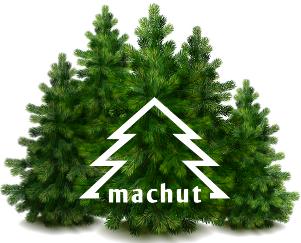 Machut, P.P.H., Koziegłowy