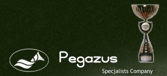 Przedsiębiorstwo Usług Specjalistycznych PEGAZUS, P.P.H.U., Augustów