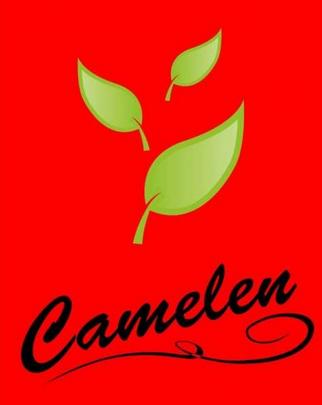 Camelen LTD, Sp. z o.o., Lublin