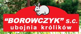 Firma Borowczyk, S. C., Gostyń