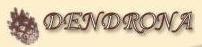 Dendrona, Sp. z o.o., Komorów-Granica