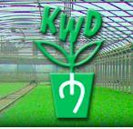 Gospodarstwo Rolno - Ogrodnicze Rozsad K.W.Dobieccy, Z.P., Blizanów