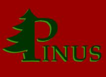 Pinus, P.P.H.U., Zielona Góra