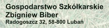 Gospodarstwo Szkółkarskie  Zbigniew Biber, os. fiz., Lubań