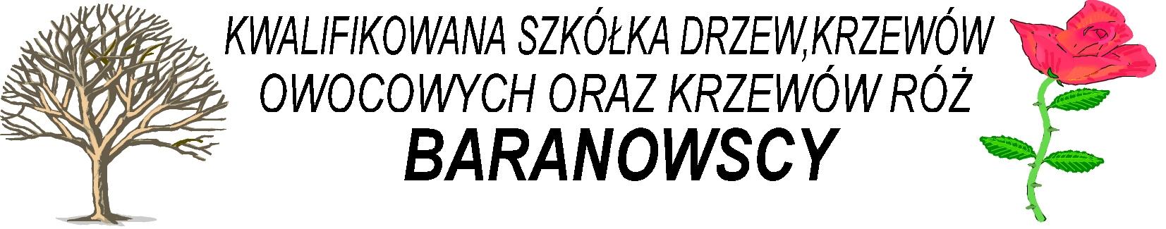 Kwalifikowana Szkółka Drzew Owocowych i Krzewów Róż Baranowscy, Kostrzyn