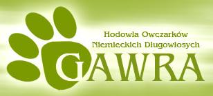 GAWRA Hodowla Owczarka Niemieckiego Długowłosego, Os. fiz., Zielona Góra