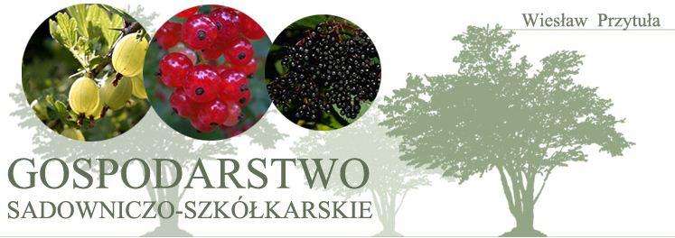 Gospodarstwo Sadowniczo-Szkółkarskie Wiesław Przytuła, Z.P., Świdnik