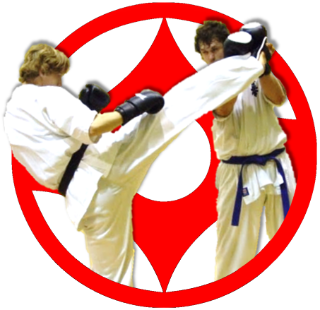 Zamówienie Treningi Karate Kyokushi - Bydgoszcz