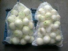 Zamówienie Usługowe obieranie cebuli na biało
