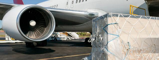 Zamówienie Transport lotniczy door to door