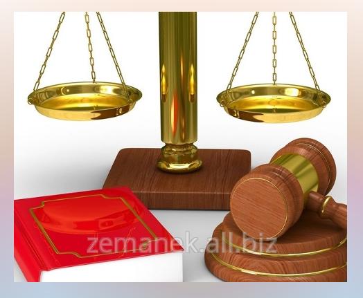 Zamówienie Reprezentacja w sądach