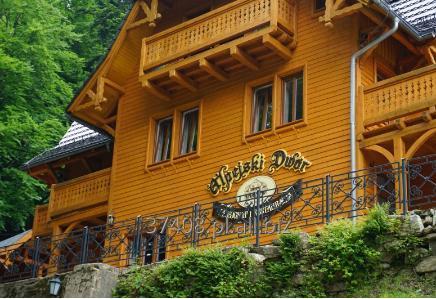 Zamówienie Wypoczynek w Pensjonacie Alpejski Dwór Międzygórze