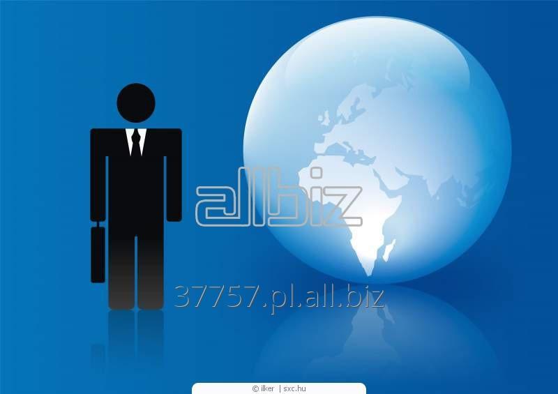 Zamówienie Biznes audyt