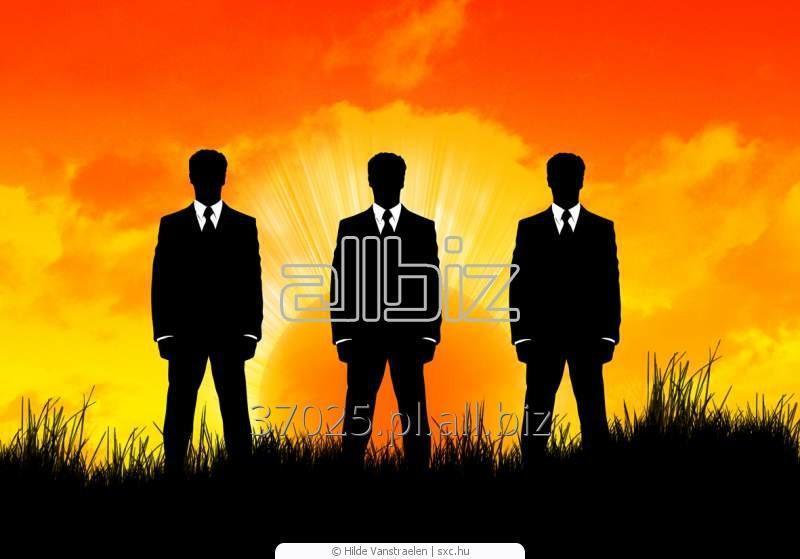 Zamówienie Biznes konsulting