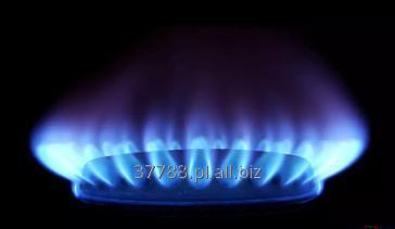 Zamówienie Rzeczoznawstwo w zakresie budowy i eksploatacji instalacji biogazowych.
